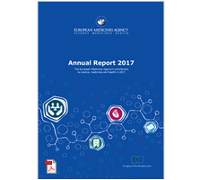 Annual report 2017 thumbnail
