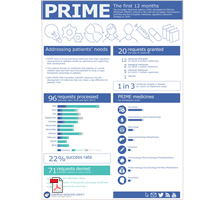Infographic - PRIME: The first 12 months