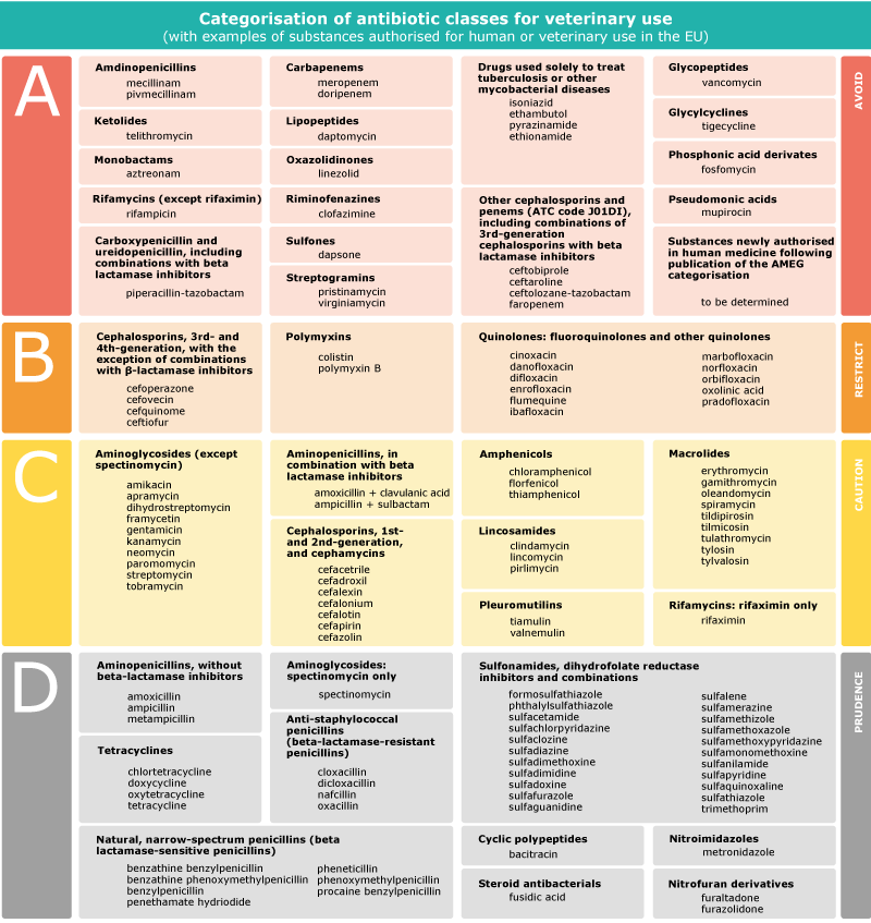 categorisation of antibiotic classes for veterinary use image