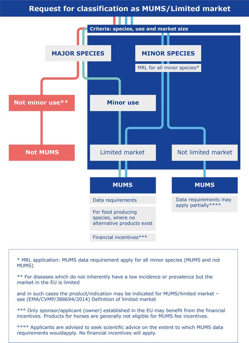 MUMS process flowchart
