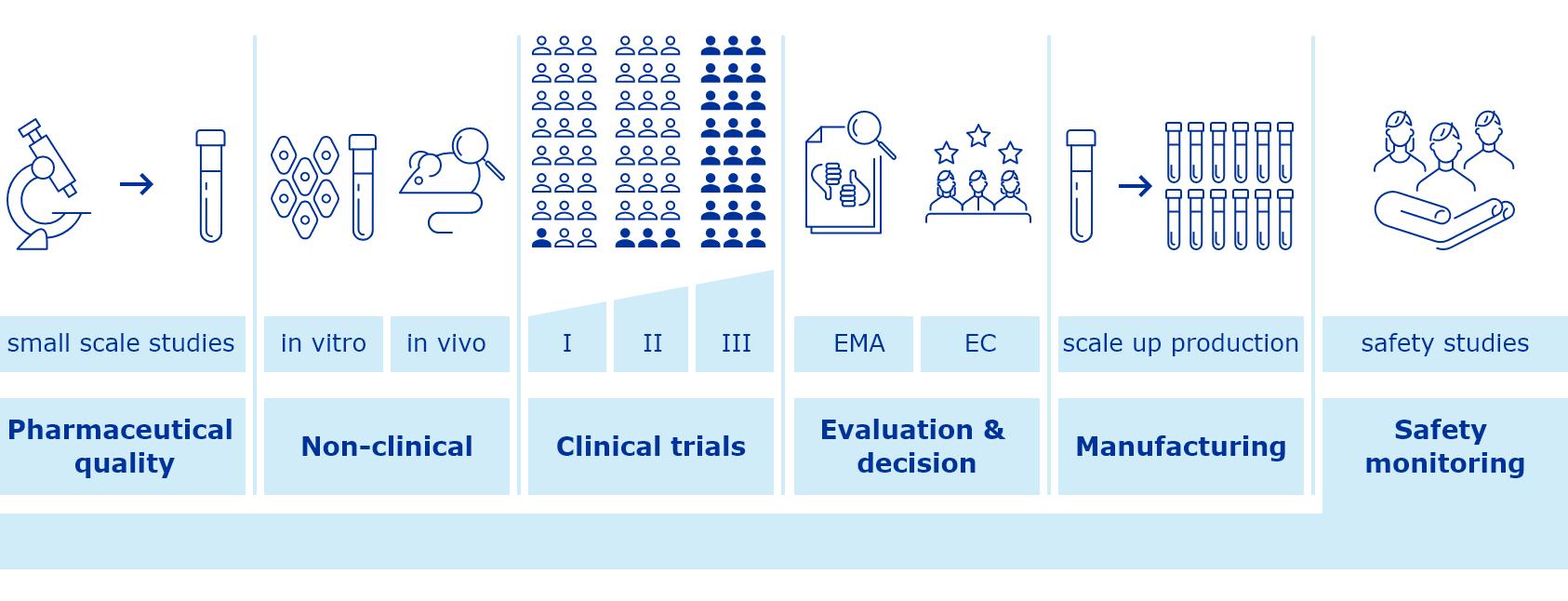 standard vaccine development process