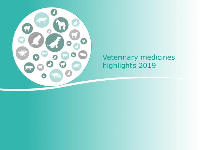Veterinary medicines: highlights of 2019
