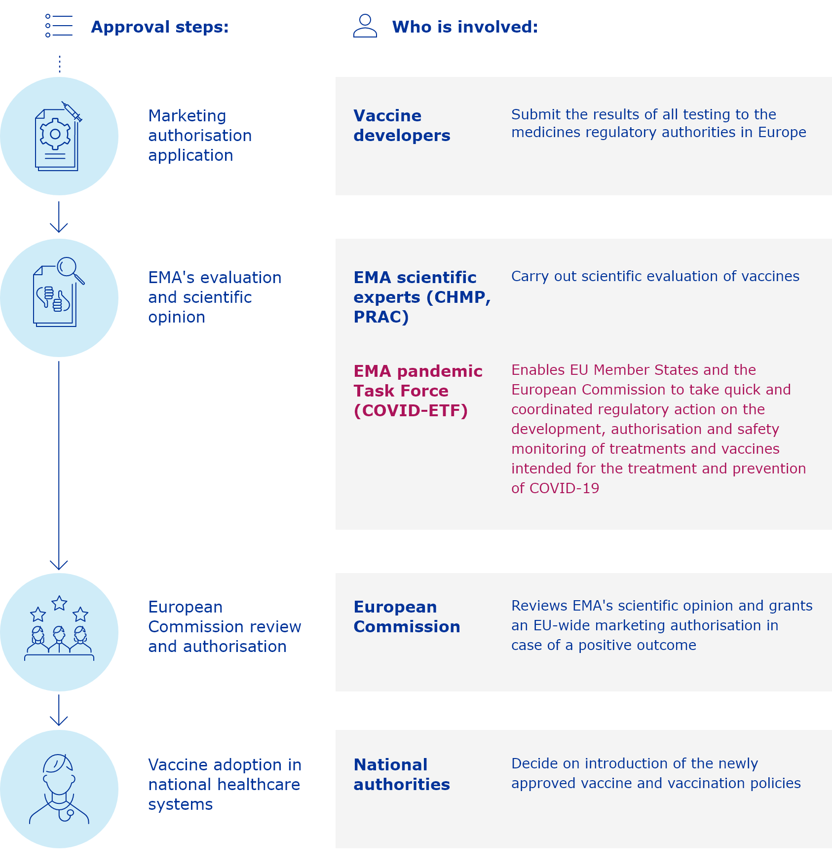 vaccines approval processes